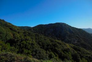 Paesaggio dalla foresta MarganaPaesaggio dalla foresta Marganai