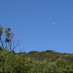 Luna di giorno