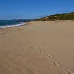 La sabbia che canta