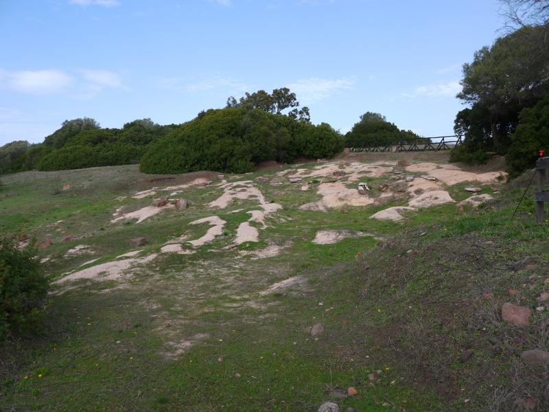 Necropoli fenicia con le tombe a fossa