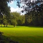 Prati verdi sui monti di Nebida