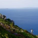 Il verde della macchia mediteranea contrasta con il blu del mare