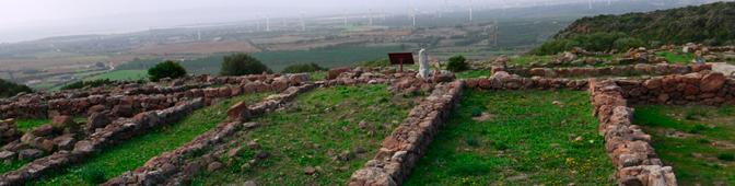 Monte  Sirai, Città fenicio-punica: Le radici del Mediterraneo
